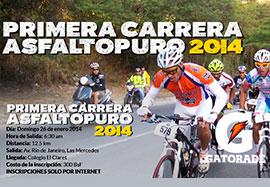 Asfalto Puro 2014